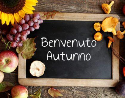 Promo Novembre.. vivi la provincia!!!